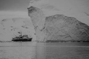 Bateau de pêche proche d'un iceberg