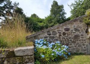 Murs de pierre avec fleurs